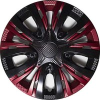 Lion Carbon R13 red-black